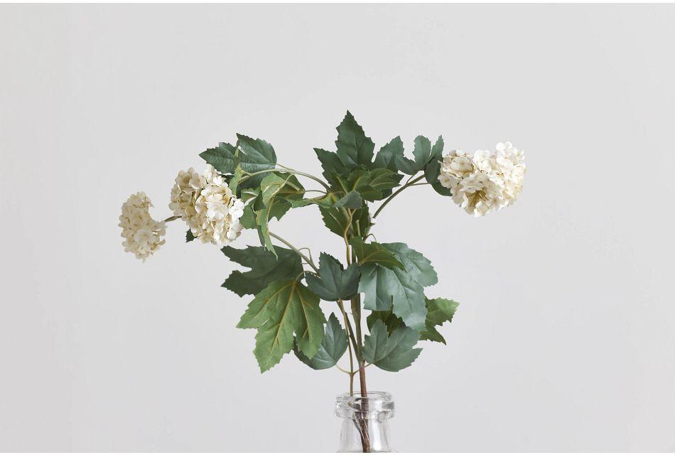 Aspen Branch,  (0)
