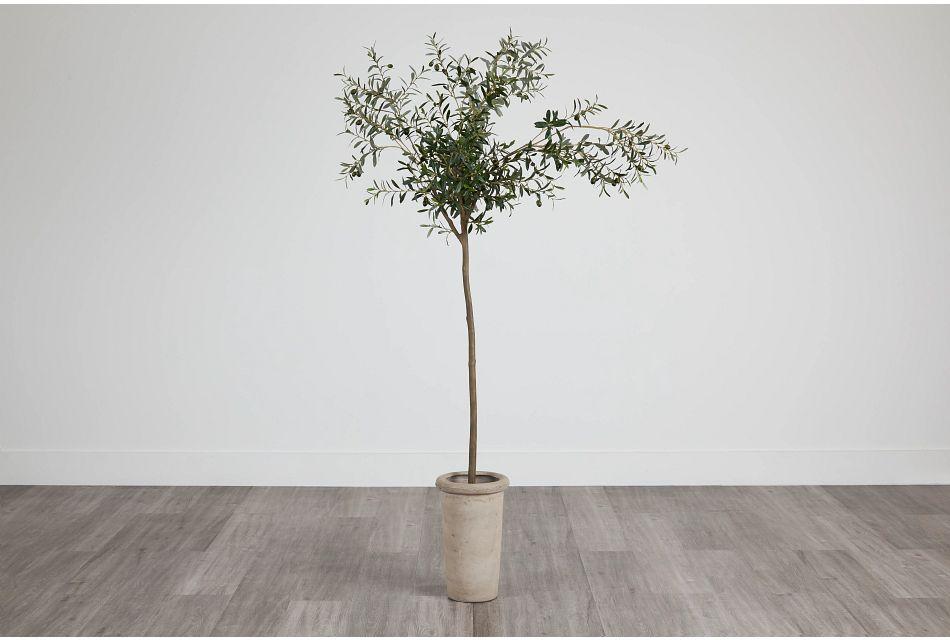 Ollie 7' Olive Tree,  (0)