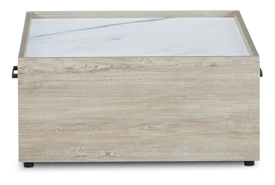 Sebastian Light Tone Storage Coffee Table