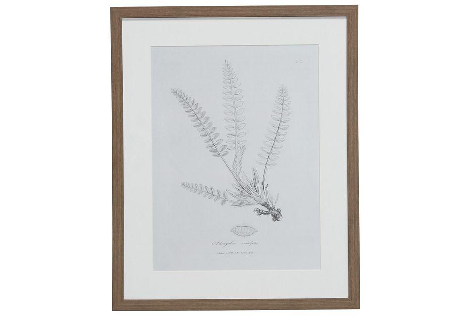 Needle Gray Framed Wall Art