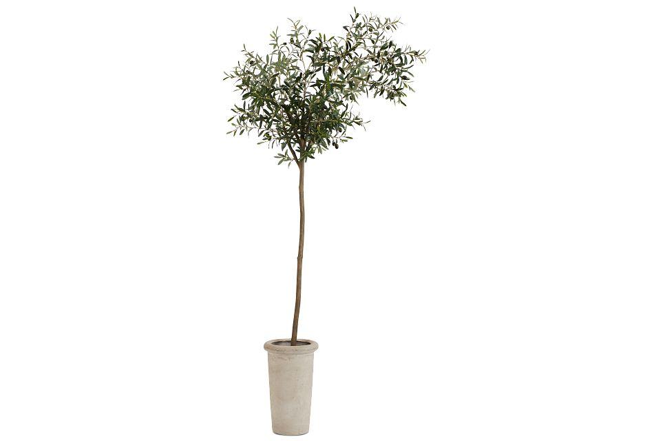 Ollie 7' Olive Tree,  (1)