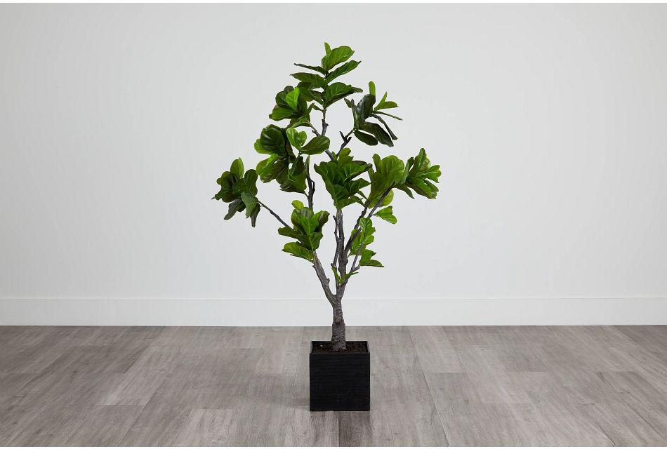 Eva 6' Fiddle Fig Tree,  (0)