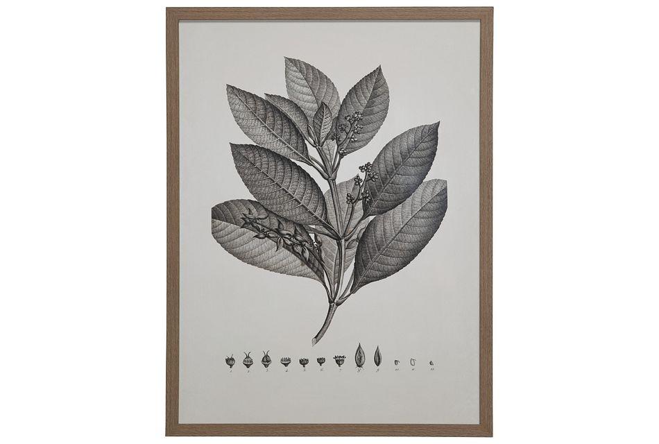 Thicket Gray Framed Wall Art