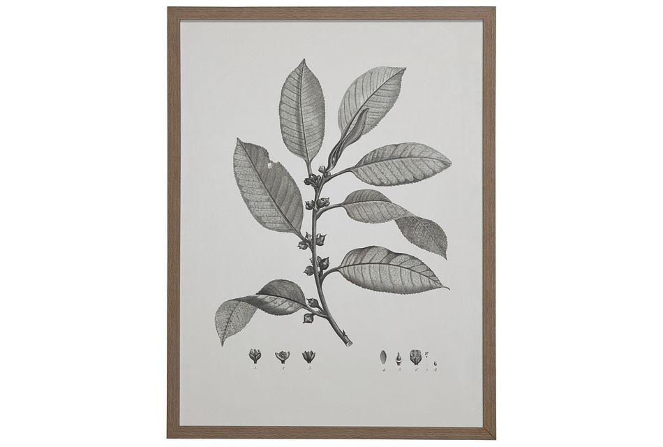 Branch Gray Framed Wall Art
