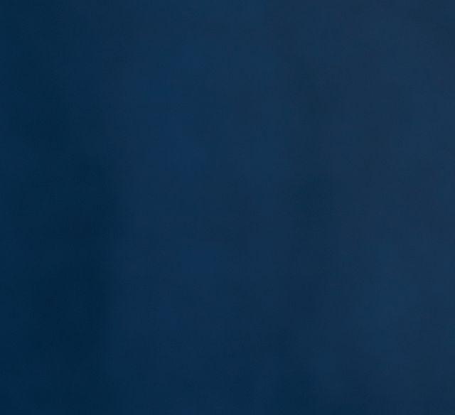 """Royale Blue 18"""" Square Accent Pillow (1)"""