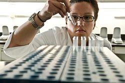 technician performing gel-clot LAL assay