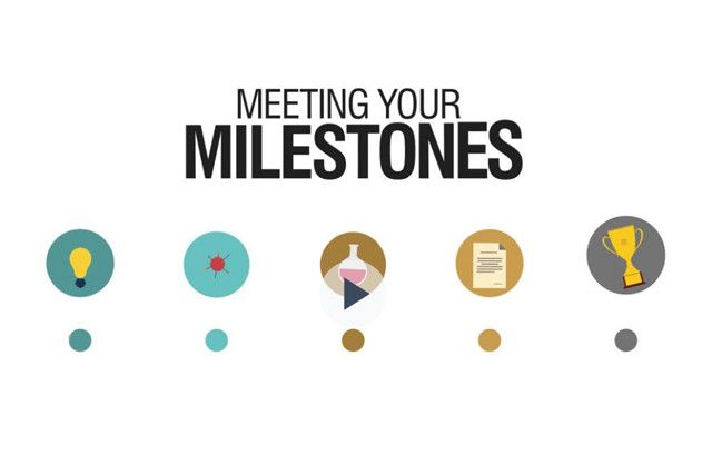 meeting your milestones slide