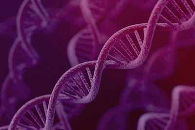 DNA cell gene