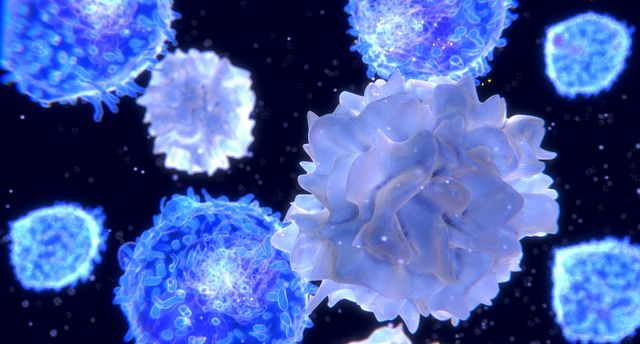 Cell & Gene Therapy Insights: Meeting Preclinical Data Requirements for Cell & Gene Therapy