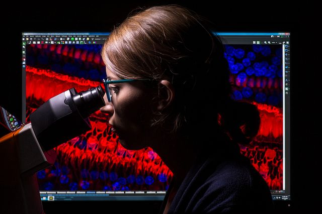 Scientist looking into a microscope.
