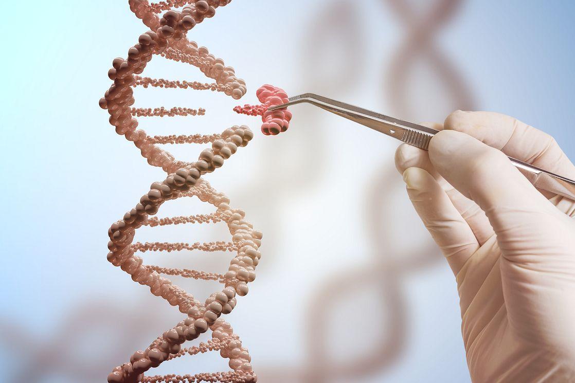 genetic manipulation of DNA