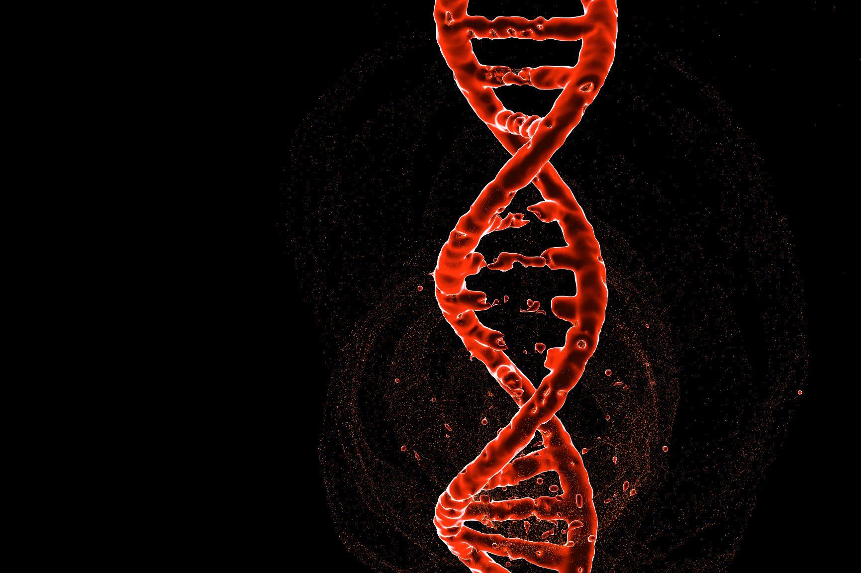 illustration of a CRISPR edited genome