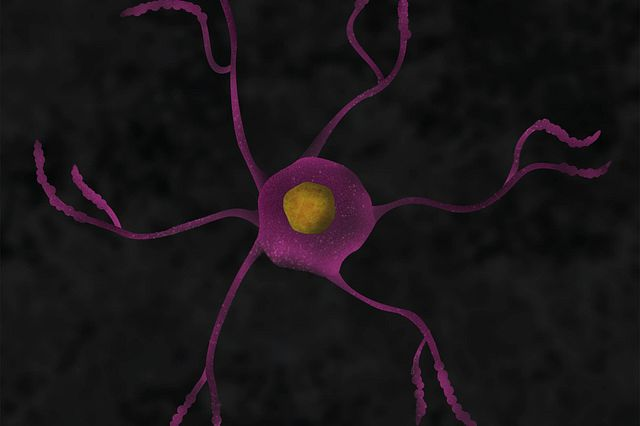 A graphic illustration of a microglial cell.