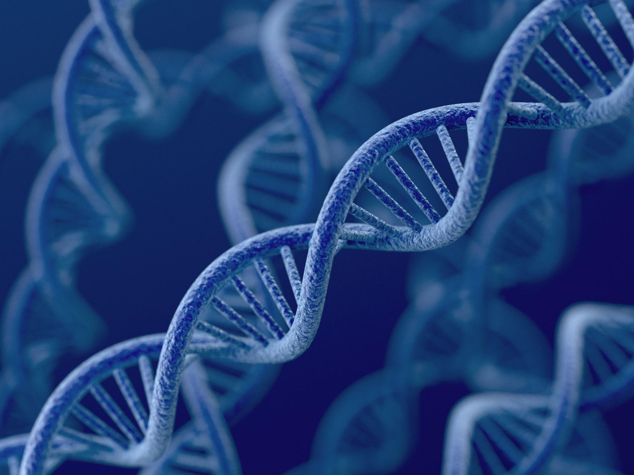 Image of DNA strands.