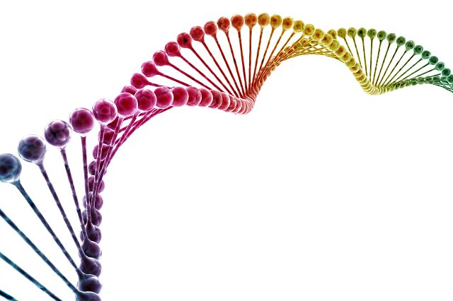 DNA multi color isolated on white background.