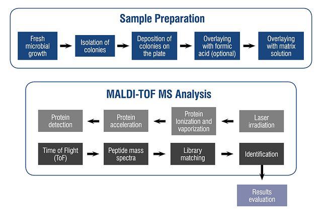 Ilustração do mecanismo MALDI-TOF