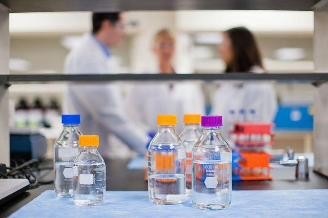 bottles of liquid in flow hood in lab