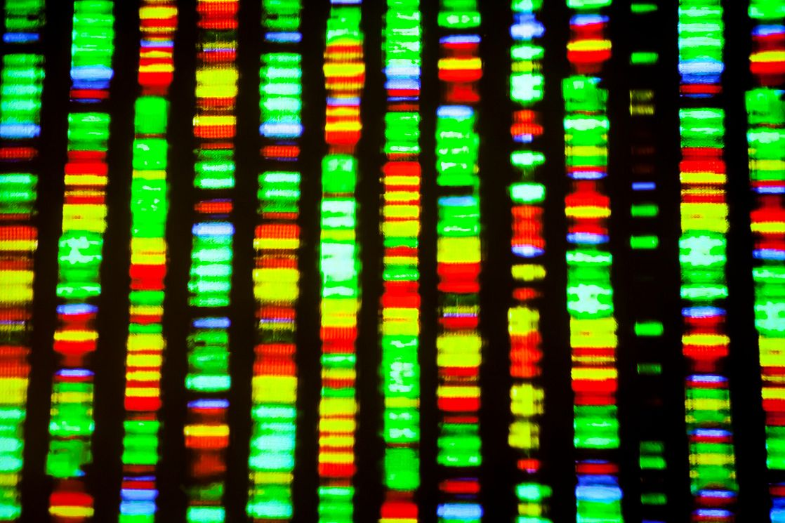 multi-color graphical image of the human genome