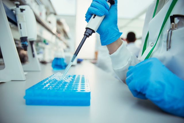 The in vitro toxicology testing services at Charles River provide support in metabolic, toxicokinetic, and bioanalytical investigations with both qualitative and quantitative data.