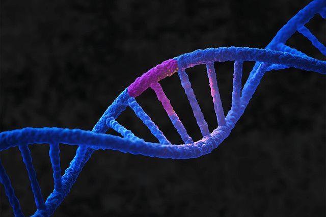 A graphical image of a DNA helix with a purple discolored portion to indicate a genetic mutation relevant to rare disease.