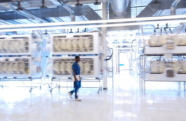 laboratory animal technician walking by isolators
