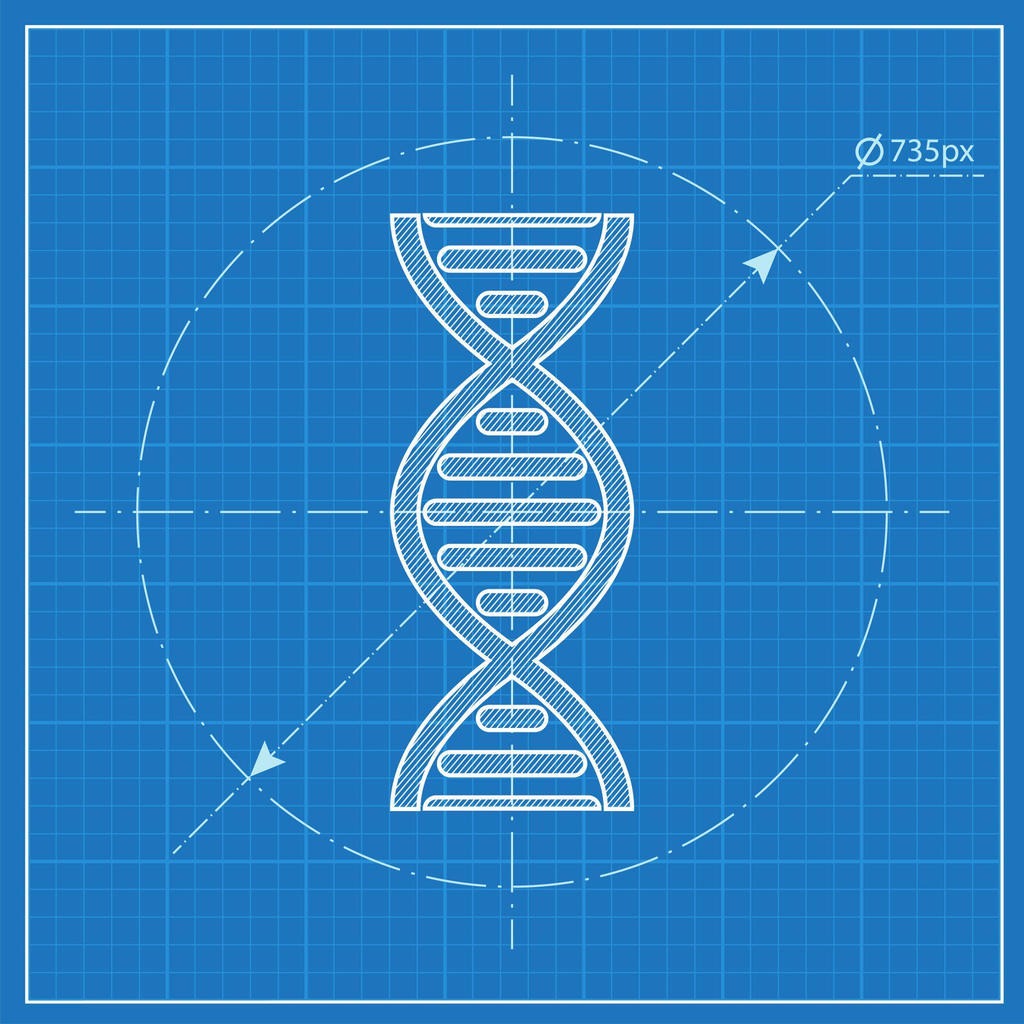 blueprint image of dna double helix