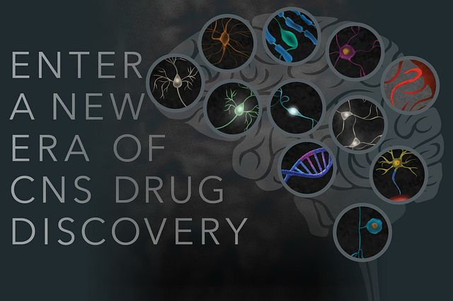 "Neurons overlaid on regions of the brain, representing neurological disease states and neuronal subtypes. The ""Enter a new era of CNS drug discovery"" image title conveys the need to start over with new tools and collaboration."