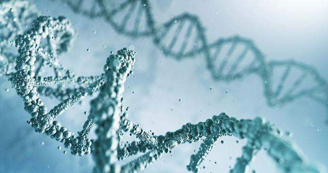 digital rendering of DNA double helix