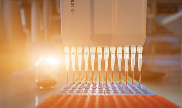 pipette and PCR plate