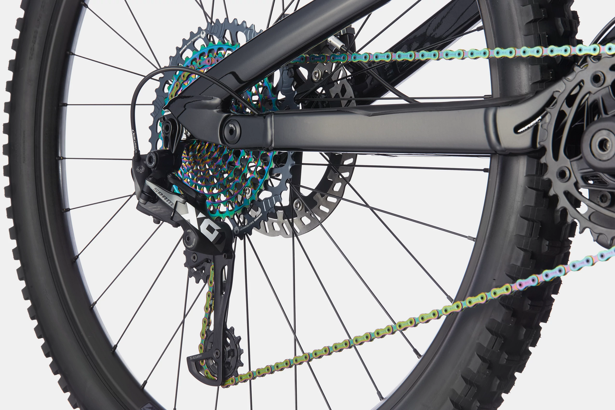 Moterra Neo  Carbon 1 Detail Image