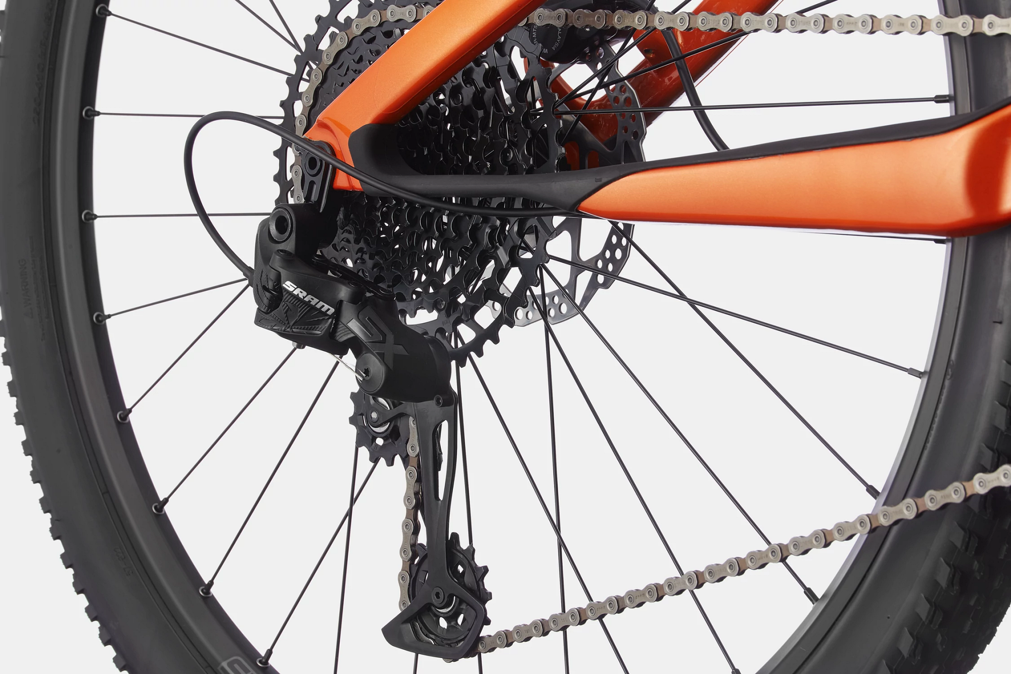 Scalpel  Carbon SE 2 Detail Image
