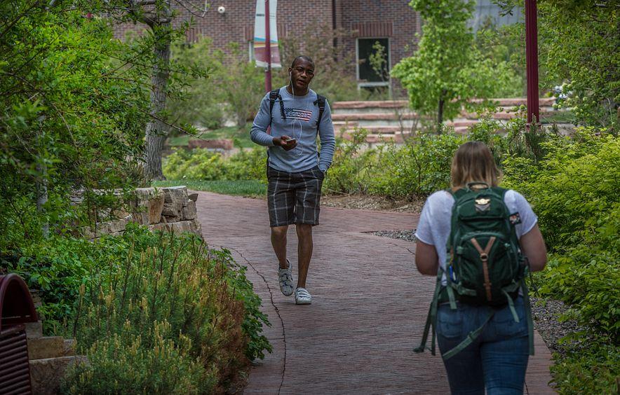students walking on shady path