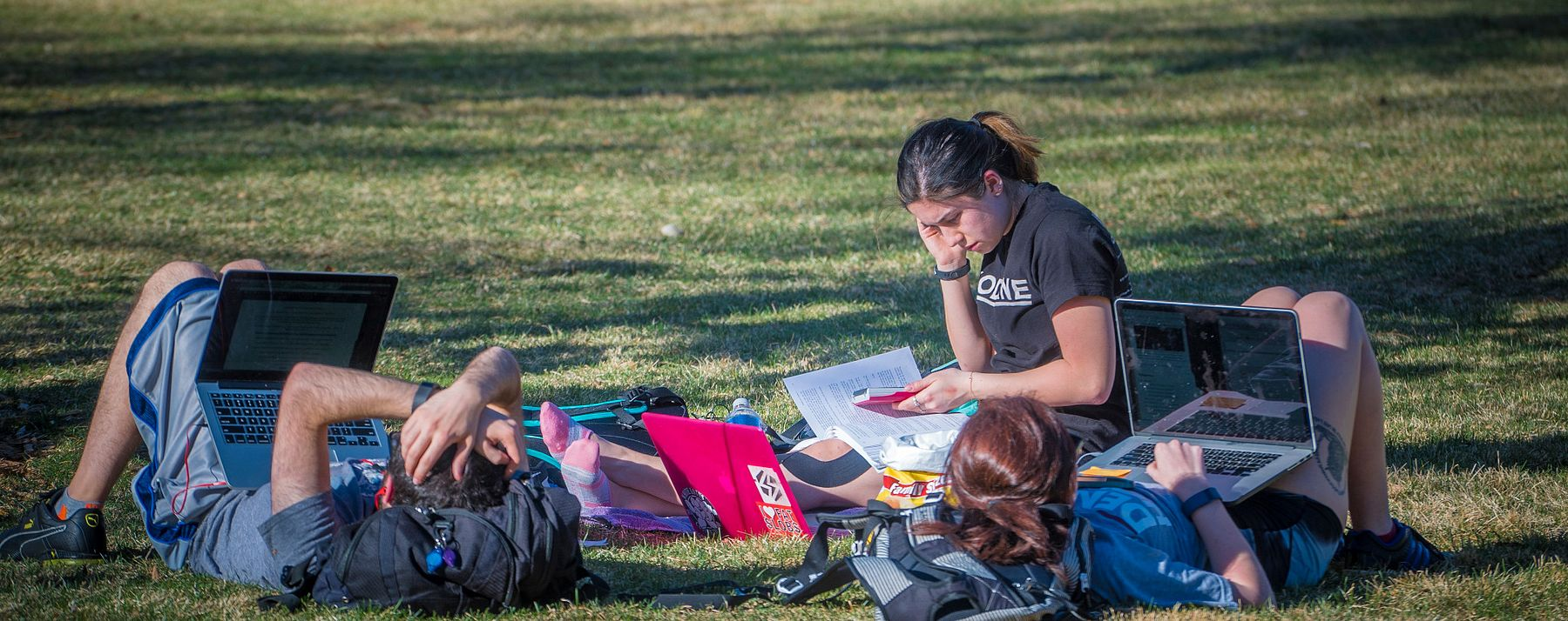 students studying on grass