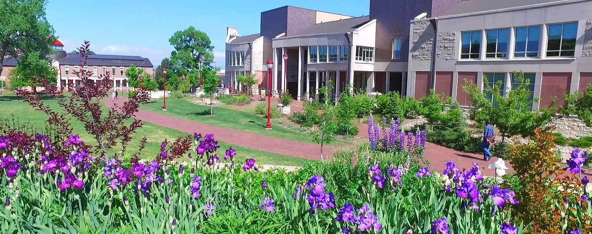 du library with flowers