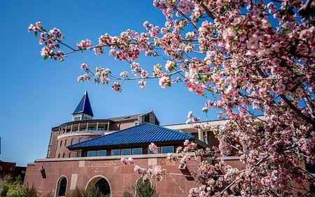 DU campus in spring