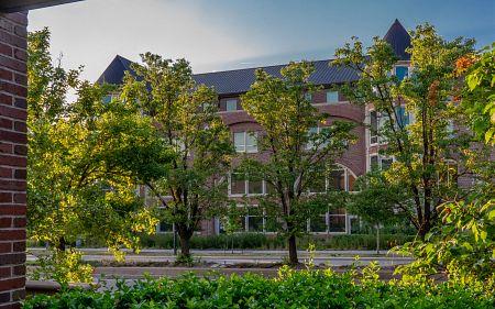 campus in summer