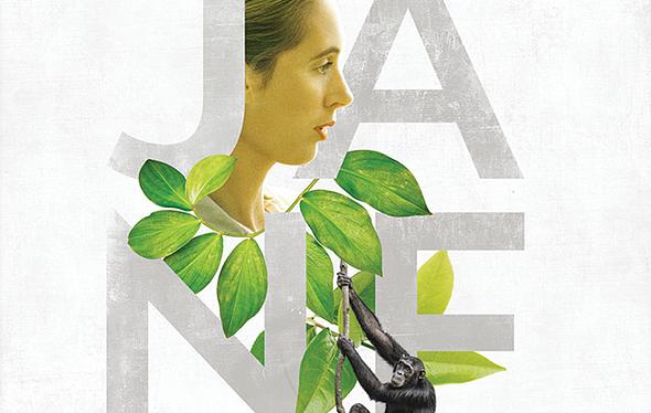 Jane - In Concert