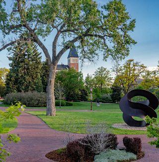 Foliage on the DU campus