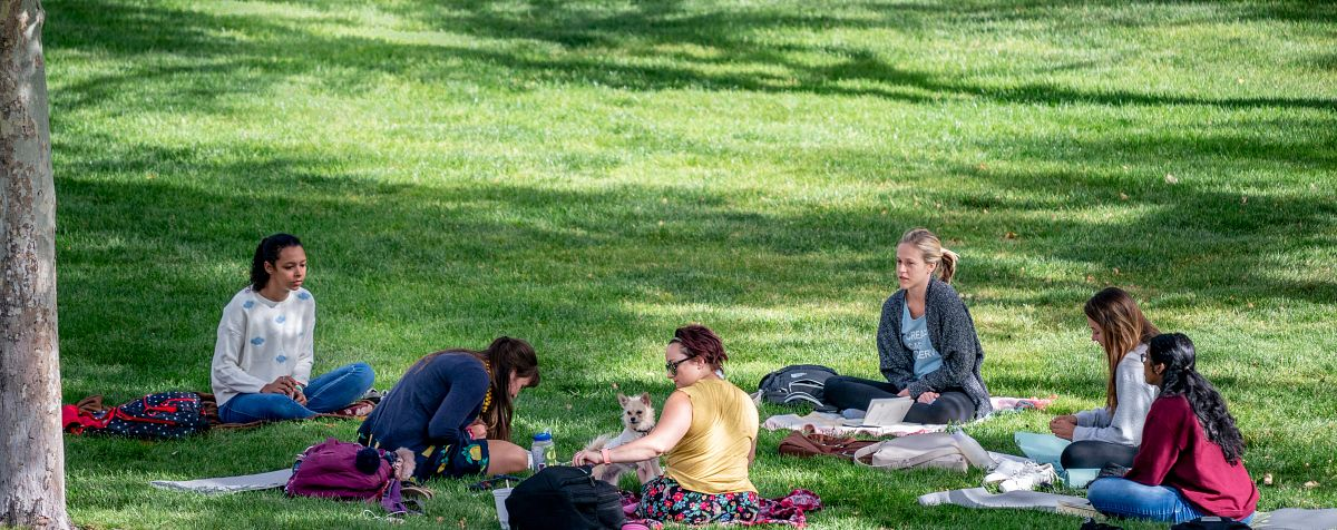Students on the Denver campus.