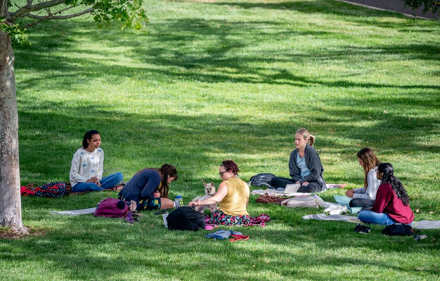 students seated on campus lawn
