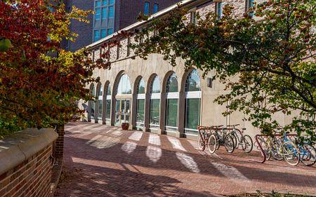 sunlit campus