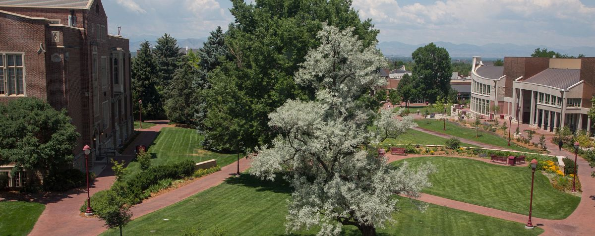 aerial photo of green trees on DU campus with blue sky and clouds in background