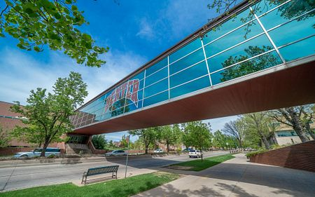 driscoll bridge on DU's campus
