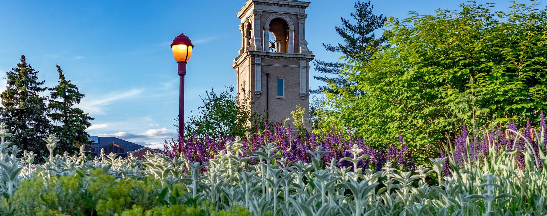 campus scenic image