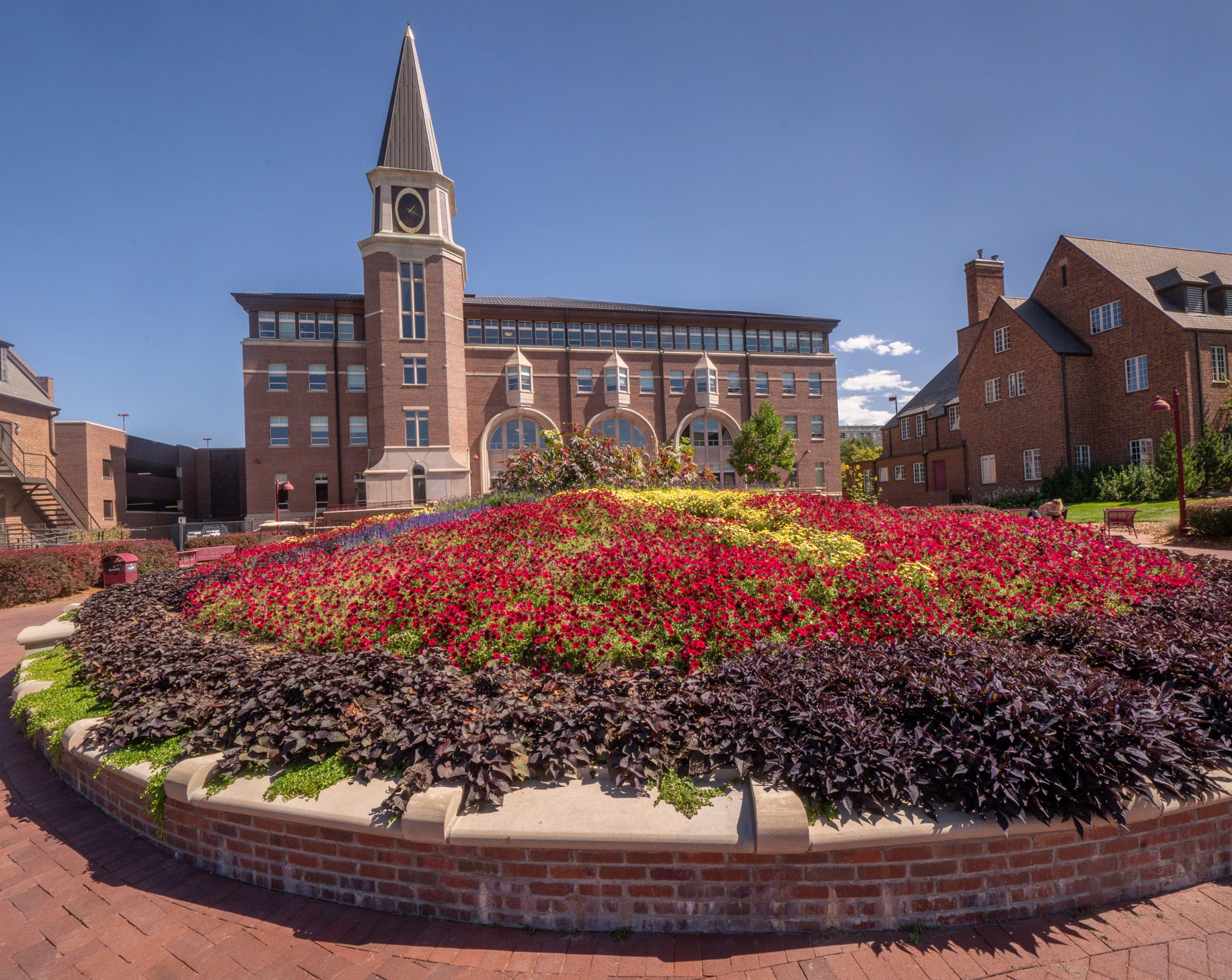 Photo of garden on the DU campus