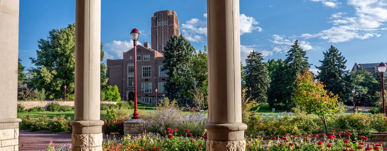 background image of mary reed hall at DU campus with pillars in foreground