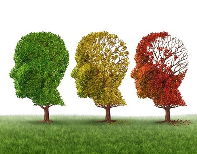 Memory-loss-trees-due-to-Dementia-and-Alzheimers