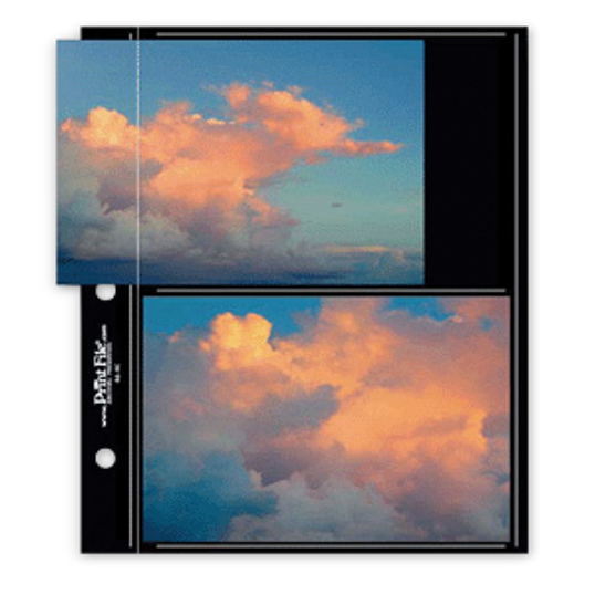 Print File® Black Polypropylene Compact Album Pages (12-Pack)