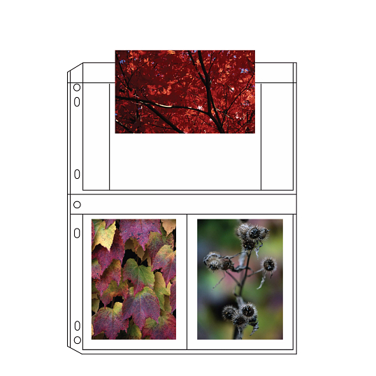 "Print File® 8 mil Polypropylene Album Pages for 4 x 6"" Prints (25-Pack)"