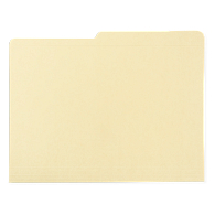 Gaylord Archival® Reinforced Half-Cut Tab International A4 Size File Folders (100-Pack)